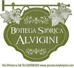 logo-alvigini-sito